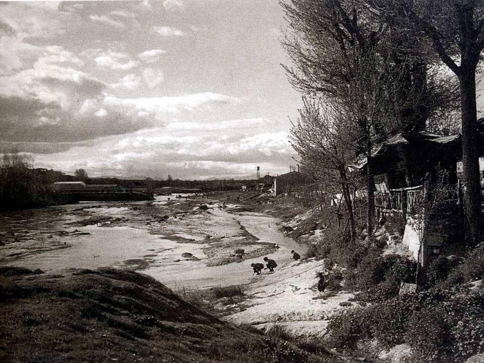 El río Manzanares en libertad
